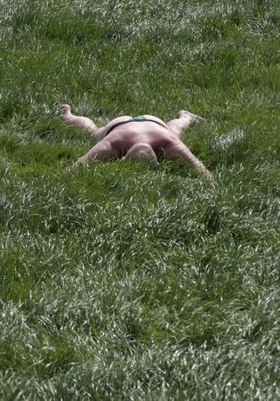 圖文:英國倫敦一名男子爬在櫻草花地中