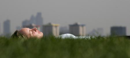 圖文:英國倫敦一名婦女躺在櫻草花地中