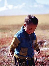 圖片:滇藏線自助遊攻略
