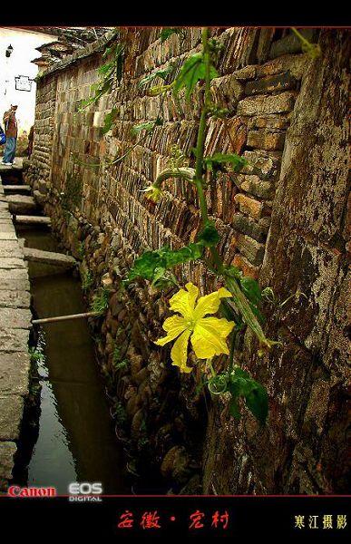 攝影圖片:安徽宏村