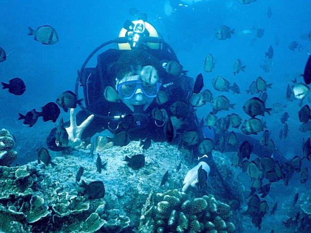 三亞蜈支洲島潛水
