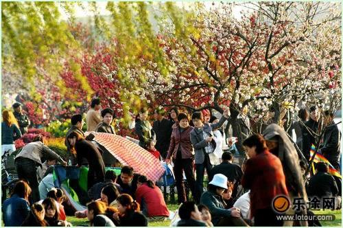 白堤上坐滿了賞花的遊客_