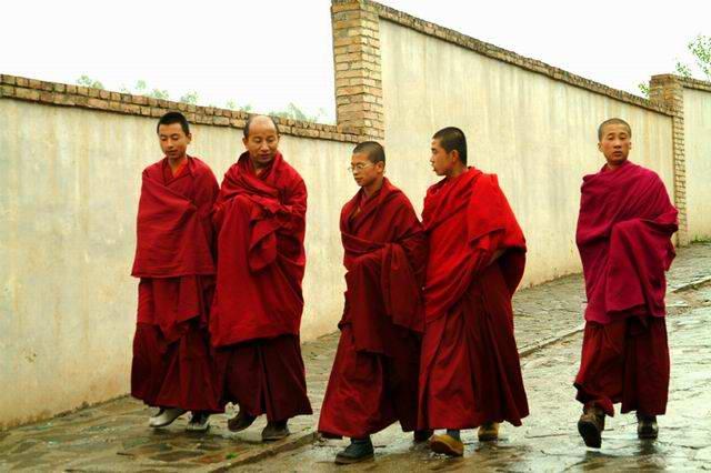 圖片:塔爾寺喇嘛