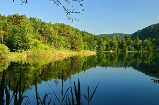 寧靜的自然景色(1)