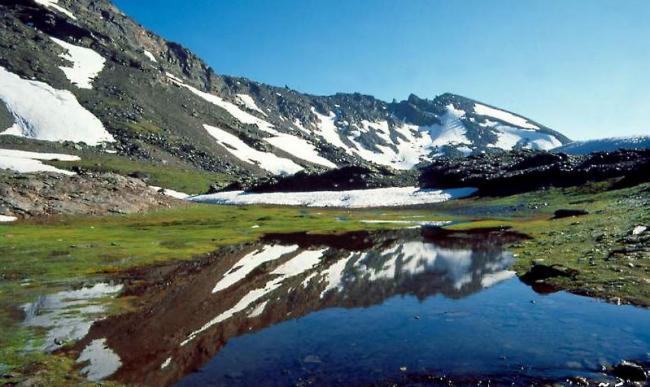 寧靜的自然景色(7)