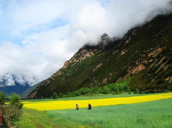 西藏風光圖片(10)