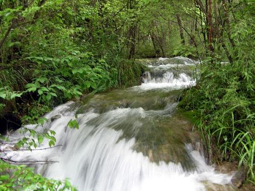 九寨溝圖片-潺潺的水流