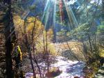 九寨溝深秋風景圖片