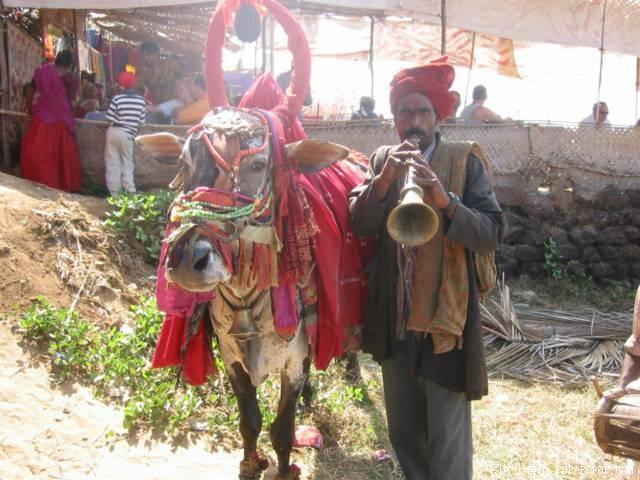 印度風光圖片
