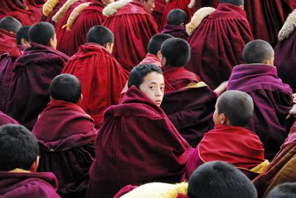 郎木寺小喇嘛圖片