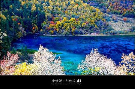 九寨溝風景-秋韻美景