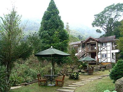 台灣旅遊景點圖片:溪頭園區
