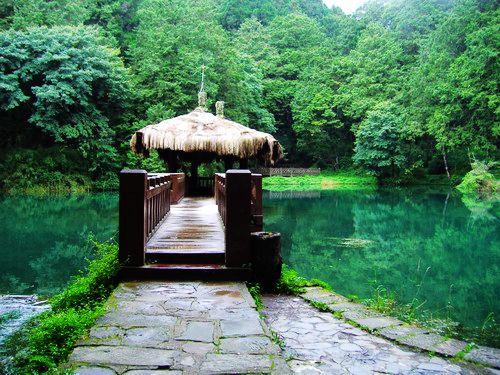 台灣旅遊景點圖片:嘉義阿里山