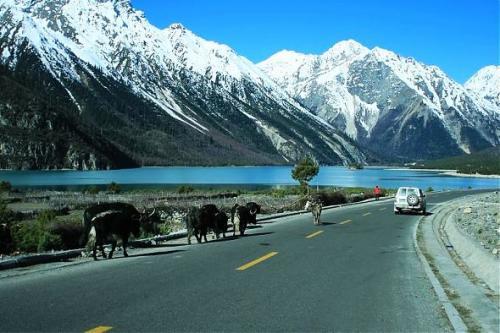 川藏線秋季風光-然烏湖