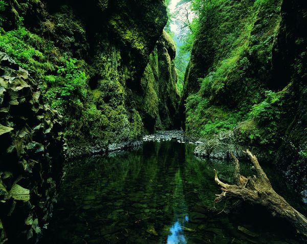 2009中國生態旅遊年