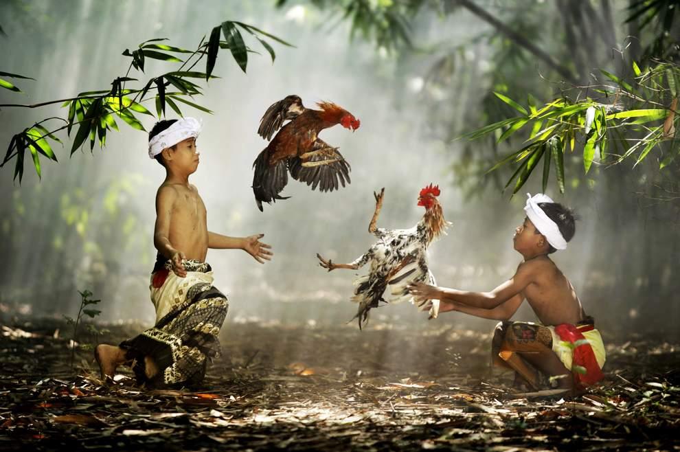 高清圖片:2010年美國國家地理攝影大賽作品-印度尼西亞西爪哇的Suradita村