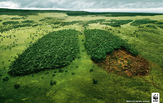 國外環保創意廣告圖片-第19 張