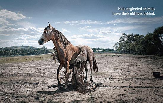 國外環保創意廣告圖片-第18 張
