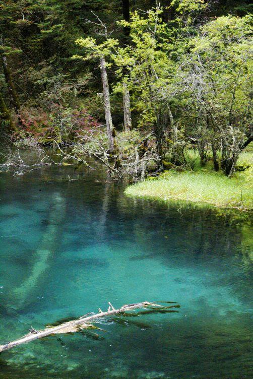 九寨溝圖片欣賞:藍色池塘