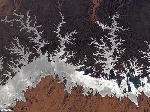 圖片:2005年,從國際空間站拍攝埃及納塞爾湖