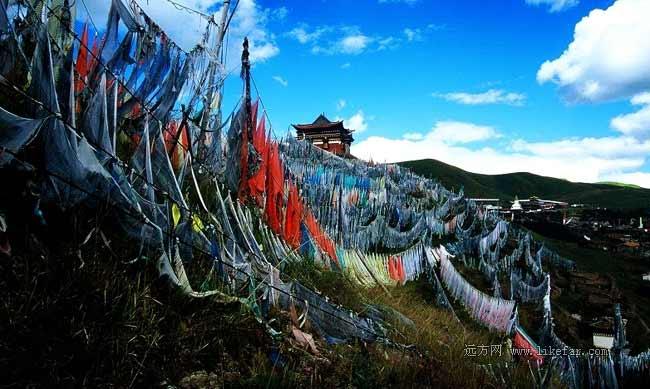 索克藏寺的經幡群 作者:荊無牙