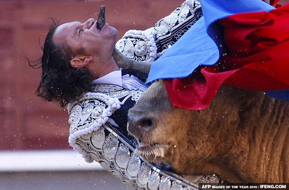 圖片:法新社公佈2010年度最佳圖片 鬥牛士被公牛角刺穿下顎