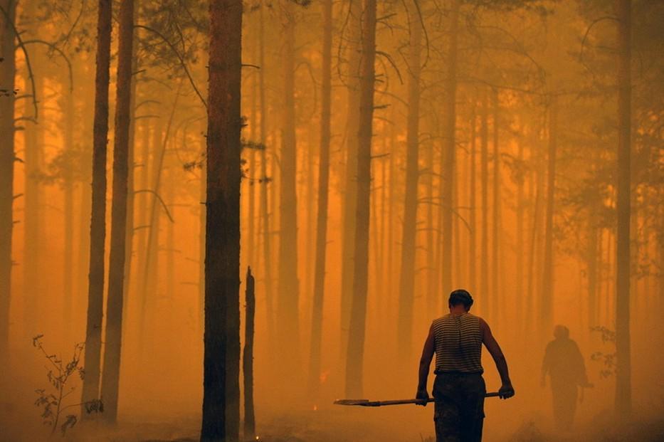 圖片:俄羅斯消防隊正在撲滅森林大火