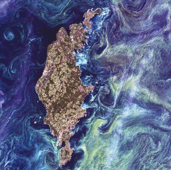 圖片:藝術地球